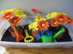 Children can pretend to garden in a tub filled with 'dirt' (black beans).
