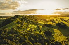 Byron Bay Hinterland. So blessed to have grown up here ❤️