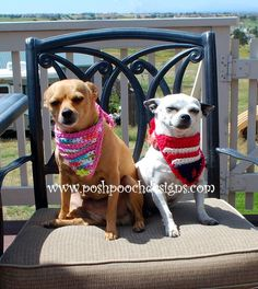 Posh Pooch Designs Dog Clothes: Dog Flag Bandanna Crochet Pattern and Video