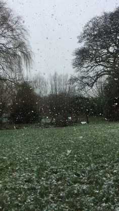 # Nature landschaft Slow motion snow in our garden Slow Motion Photography, Rain Photography, Summer Nature Photography, White Photography, Nature Aesthetic, Aesthetic Videos, Aesthetic Dark, Pretty Landscapes, Nature Gif
