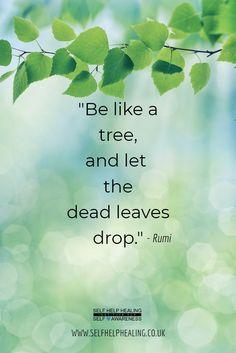 40 Best Rumi Quotes Images In 2019 Inspire Quotes Rumi Quotes