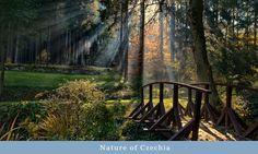 Nature of Czechia