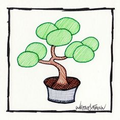 by Whitney Fawn for #30DoC Day 8 - Bonsai - @createstuff