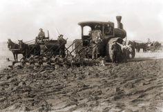 J. N. Welsby breaking sod in South Dakota in 1904. - International Museum of the Horse