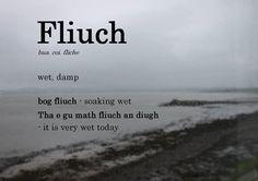 Scottish Gaelic Phrases, Scottish Words, Scottish Quotes, Gaelic Words, Learn Welsh, Welsh Language, Unusual Words, Latin Words, Bfg