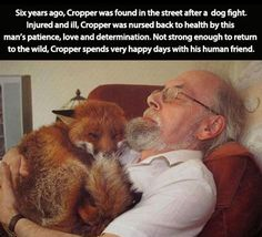Feel Good Friday:  People Being Kind To Animals