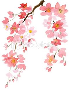 watercolor cherry blossom tattoos | watercolor cherry blossoms | Tattoo Inspirations