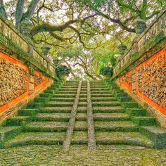 Vizcaya Museum and Gardens 3251 S Miami Ave, Miami, FL 33129   (305) 250-9133  Built on the water's edge in 1923, this Venetian villa is a must-see when visiting Miami. A walk around the outside is guaranteed to have you dreaming of Europe, so just imagine the culture-overload when you check out all the art, furniture and structures inside.   Photo via davidstekarn/Instagram