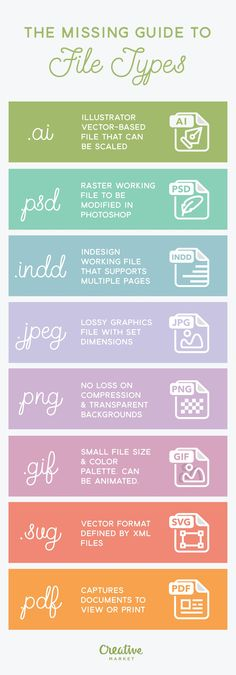 Missing Guide to File Types {Infographic} - Best Infographics Understanding the pros and cons of using a certain file type for your project is important. This infographic from Creative Market helps you better understand various file formats:
