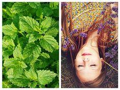 Lily Pulitzer, Natural Remedies, Cape, Health, Dresses, Fashion, Medicine, Plant, Mantle