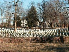 Alexandria National Cemetery (Image: Albert Herring)
