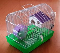 Hamster cage suitable for Russian dwarf hamster.Wheel, water bottle