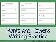 Plants and Flowers Writing Practice