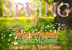 We are excited that Spring is around the corner and everything is blooming again. In the month of September Guests will be randomly selected and surprised with occasional free breakfasts. Make your booking today, call 082 600 8596 or email us info@lamarchant.co.za September, Corner, Bloom, Make It Yourself, Spring, How To Make, Free