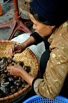 shelling snails, Hanoi, Vietnam