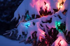 Glow in the Snow