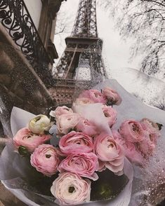 Image shared by 𝓔𝓶𝓶𝓪. Find images and videos about pink, flowers and travel on We Heart It - the app to get lost in what you love. Frühling Wallpaper, Paris Wallpaper, Flower Wallpaper, Pretty In Pink, Pink Flowers, Beautiful Flowers, Flower Aesthetic, Pink Aesthetic, Paris Photography