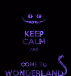 come to wonderland