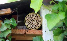 Unter dem Dach ist der Unterschlupf vor Regen geschützt und es wird nicht lange dauern, bis erste Wildbienen einziehen und nisten