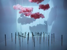 kytice, clouds, pink