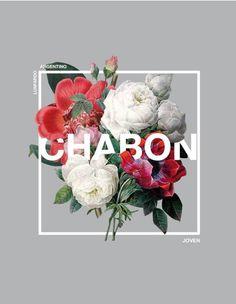 Chabon | graphic design inspiration | digital media arts college | www.dmac.edu | 561.391.1148