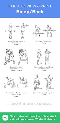 Bicep/Back – click to view and print this illustrated exercise plan created with #WorkoutLabsFit