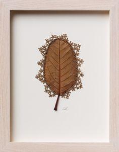 Susanna Bauer crochet leaf art featured on The Fiber Studio 'Needle + Pine' mood board. Crochet Leaves, Crochet Flowers, Leaf Skeleton, Dry Leaf, Painted Leaves, Crochet Art, Leaf Art, Cotton Quilts, Dried Flowers