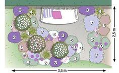 Pflanzplan Rosenbegleiter