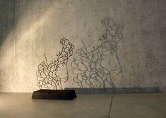 Two dimensional wire sculptures made to look like line drawings