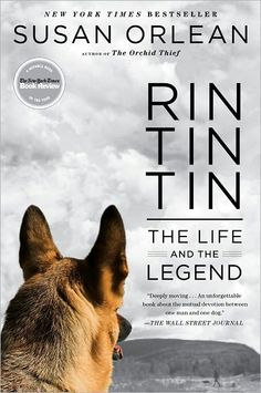 Title: Rin Tin Tin | Author/Guest: Susan Orlean | Episode 08024 | #Books #ColbertReport