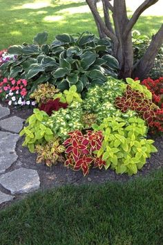 Cheap landscaping ideas for your front yard that will inspire you – Lovelyving - DIY Garten Landschaftsbau Garden Yard Ideas, Lawn And Garden, Backyard Ideas, Garden Art, Easy Garden, Front Yard Ideas, Garden Layouts, Front Yard Design, Small Garden Decoration Ideas