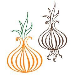 Onion+vector+1796176+-+by+Aliaksei on VectorStock®