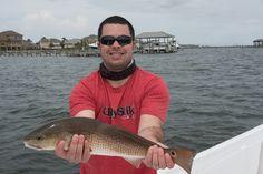 Red fish in Santa Rosa Sound, FL
