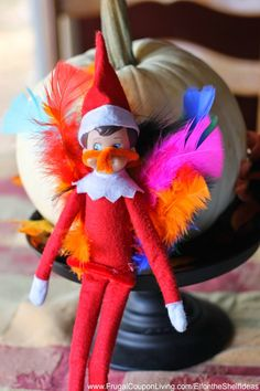 Elf on the Shelf Ideas | Elf Dresses as a Turkey on Frugal Coupon Living. THis is a great Thanksgiving Elf on the Shelf Idea for the first night!