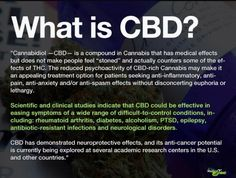 Info on CBD www.tailoredvape.com