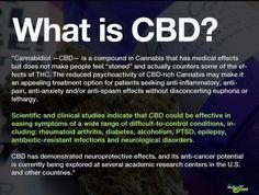 Info on CBD www.tailoredvape.com