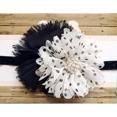 Black and white baby headband, blossom headband, photo prop, spring, newborn headband, flower bow, photography prop on Etsy, $9.95