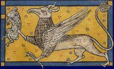Faune : griffon Bestiaire Grande-Bretagne, troisième quart du XIIIe siècle Paris, BNF, département des Manuscrits, Latin 3630, fol. 77