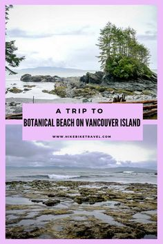 Head to Botanical beach near Port Renfrew at low tide to explore the phenomenal tidal pools - but beware of rogue waves Famous Places In France, Where Is Bora Bora, British Columbia, Columbia Travel, Victoria Island, Visit Canada, Philippines Travel, Vancouver Island, Canada Travel