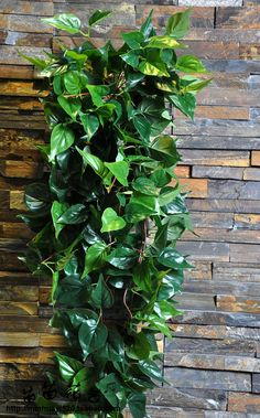 1pc Evergreen Leaves Wall Hanging PU leaf Green Rattans 130cm Fake plant Home Wedding Decoration Lvy Simulation Rattan #Affiliate