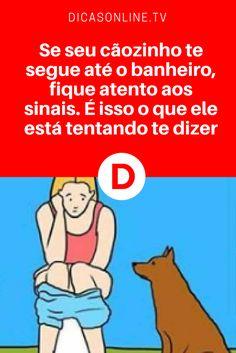 Linguagem de sinais dos cachorros | Se seu cãozinho te segue até o banheiro, fique atento aos sinais. É isso o que ele está tentando te dizer