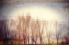 Kikinda Staro Jezero Refleksija na vodi Explore, Landscape, Abstract, Artwork, Nature, Photos, Painting, Scenery, Work Of Art