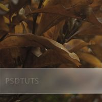 Quick Tip: Add a Frosted Background to Photo Captions
