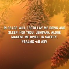 Psalms In peace will I both lay me down and sleep; For thou, Jehovah, alone makest me dwell in safety. Morning Scripture, Lay Me Down, James 1, The Heart Of Man, New Living Translation, New International Version, Verse Of The Day, S Word, Humility