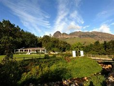 Mixed Use Farms For Sale in Wellington. View our selection of apartments, flats, farms, luxury properties and houses for sale in Wellington by our knowledgeable Estate Agents. Property Real Estate, Mixed Use, Farms, African, Wine, Lifestyle, Travel, Inspiration, Biblical Inspiration