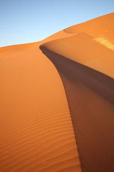 Perfect dune, Namib desert