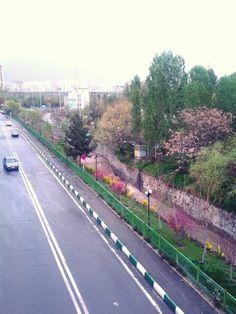 تهران بهار 94 Photo by: Maryam Azadeh