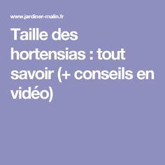 Taille des hortensias : tout savoir (+ conseils en vidéo) Permaculture, Pot Plante, Horticulture, Countryside, Exterior, Organic, Hydrangeas, Iris, Gardening