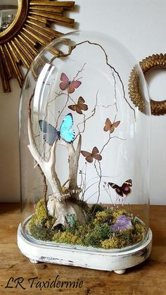 Jar Crafts, Diy And Crafts, Cloche Decor, Deco Nature, Quinceanera Themes, Cement Crafts, The Bell Jar, Nature Crafts, Dream Decor
