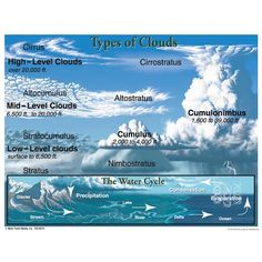 TYPES OF CLOUDS CHART Chartlets are an excellent reference resource for students! The Types of Clouds chart measures x and includes a resource guide on the back. Display in a science center for students to easily reference. Earth And Space Science, Earth From Space, Science And Nature, Weather Science, Weather Unit, Weather Activities, Weather Crafts, Summer Science, Science Fair